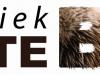 Dierenkliniek-Grote-beer