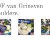 van-grinsven-fruit